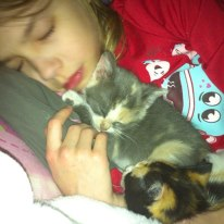 Anna and the kittens